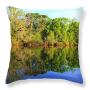 Reflections On The River Throw Pillow by Debra Forand