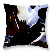 Reflections  Throw Pillow by Paul Job