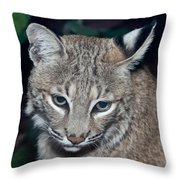 Reflective Bobcat Throw Pillow by John Haldane