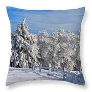 Refresh Throw Pillow by Lois Bryan