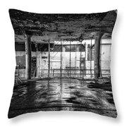 Rejuvenation Throw Pillow by CJ Schmit