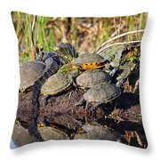 Reptile Refuge Throw Pillow by Al Powell Photography USA