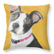 Rescued Pit Bull Throw Pillow by Jeanne Fischer