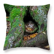 Resting Throw Pillow by Juergen Roth
