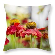 Rhapsody Throw Pillow by Ivy Ho