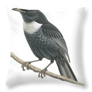Ring Ouzel  Throw Pillow by Anonymous