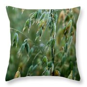 Ripening Oats Throw Pillow by Shirley Sirois