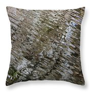 Ripples In The Swamp Throw Pillow by Carol Groenen