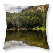River Reflections I Throw Pillow by Marco Oliveira