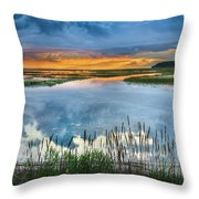 Road To Lieutenant Island Throw Pillow by Bill Wakeley
