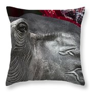 Roll Tide  Throw Pillow by Kathy Clark