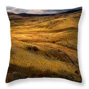 Rolling Hills Throw Pillow by Robert Bales