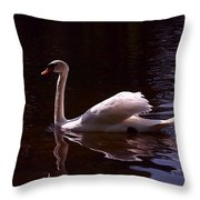 Romeo or Juliet Throw Pillow by Rona Black