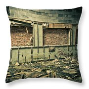 Room With A View Throw Pillow by Priya Ghose