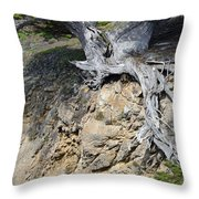 Rooted On The Edge Throw Pillow by Bruce Gourley