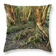 Roots Throw Pillow by James Brunker
