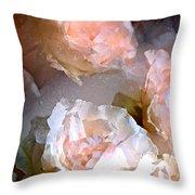 Rose 154 Throw Pillow by Pamela Cooper