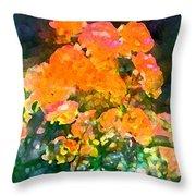 Rose 215 Throw Pillow by Pamela Cooper