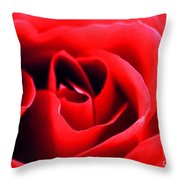 Rose Red Throw Pillow by Darren Fisher