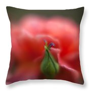Rosebud Nest Throw Pillow by Mike Reid