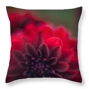 Rouge Dahlia Throw Pillow by Mike Reid