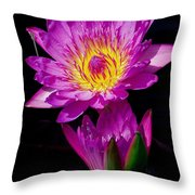 Royal Lily Throw Pillow by Nick Zelinsky