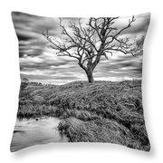 Running Through Throw Pillow by John Farnan