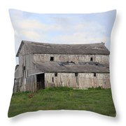 Rural Moravia Throw Pillow by Anthony Cornett