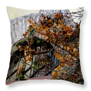 Rustic El Vergel Transom Throw Pillow by Al Bourassa