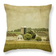 Rustic Farm - Barn Throw Pillow by Kim Hojnacki