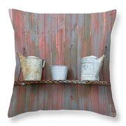 Rustic Garden Shelf Throw Pillow by Ann Horn