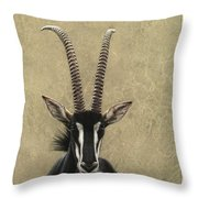Sable Throw Pillow by James W Johnson