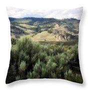 Sagebrush Throw Pillow by Marty Koch