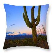 Saguaro Dusk Throw Pillow by Mike  Dawson