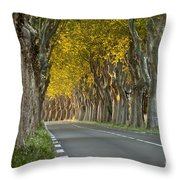 Saint Remy Trees Throw Pillow by Brian Jannsen