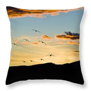 Sandhill Cranes in New Mexico Throw Pillow by William H Mullins