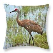 Sandhill In The Marsh Throw Pillow by Carol Groenen