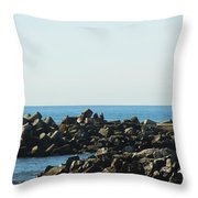 Santa Cruz Lighthouse Wide Throw Pillow by Barbara Snyder