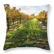 Santa Maria Vineyard Throw Pillow by Sharon Foster