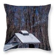 Sap House II Throw Pillow by Alana Ranney