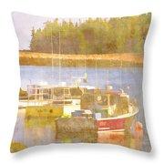Schoodic Peninsula Maine Throw Pillow by Carol Leigh