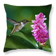 Scintillant Hummingbird Selasphorus Throw Pillow by Michael and Patricia Fogden