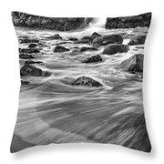 Sea Fan Throw Pillow by Michele Steffey