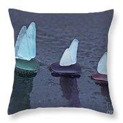 Sea Glass Flotilla Throw Pillow by Barbara McMahon