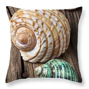 Sea Shells With Urchin  Throw Pillow by Garry Gay