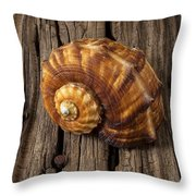 Sea Snail Shell On Old Wood Throw Pillow by Garry Gay