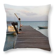 Sea Trance Throw Pillow by Eric Glaser