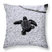 Sea Turtle Throw Pillow by Sebastian Musial