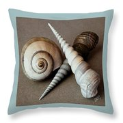 Seashells Spectacular No 24 Throw Pillow by Ben and Raisa Gertsberg