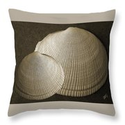 Seashells Spectacular No 8 Throw Pillow by Ben and Raisa Gertsberg